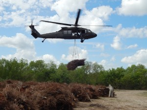 Black Hawk helicopter drops Christmas trees onto marsh.