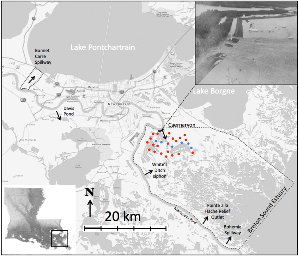 Figure 2. The Breton Sound Estuary. Dots indicate where core samples were taken and the approximate area of the crevasse splay deposit based on researchers measurements. Blue dots indicate cores that has additional analysis carried out. Upper right inset: aerial photo showing Mississippi River flowing through the 1927 Caernarvon levee breach. Dark black line at hte site of the crevasse is the estimated width of the levee breach.