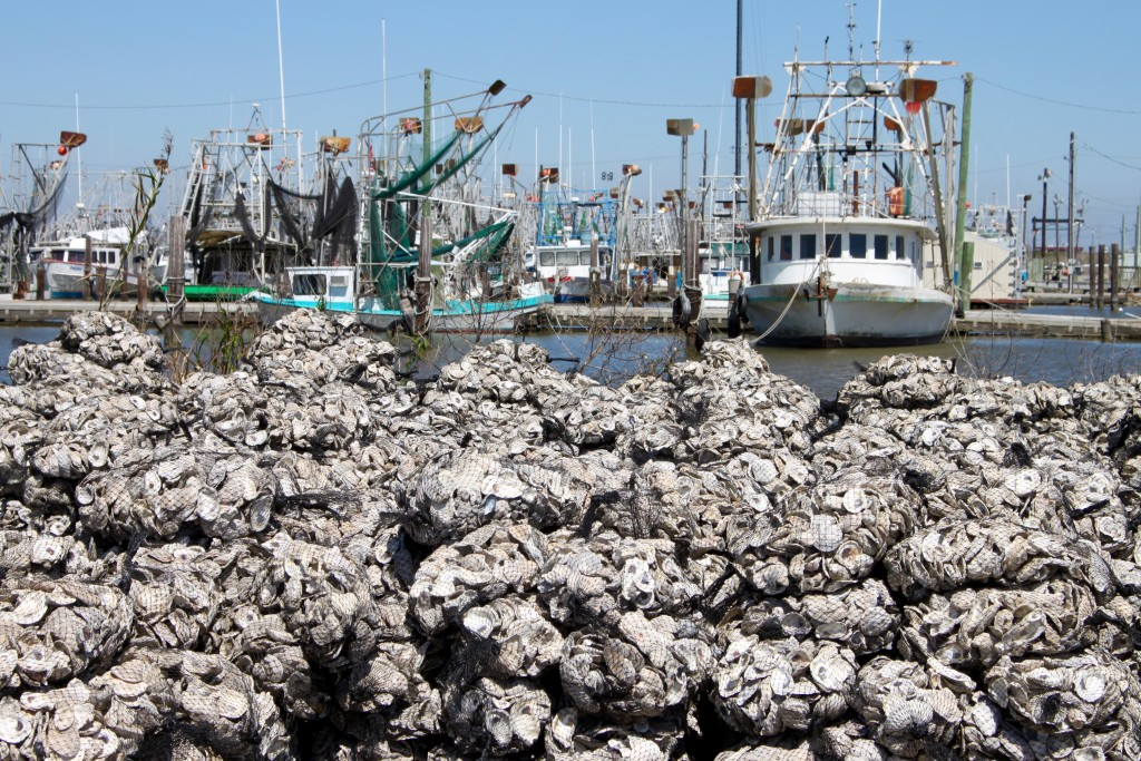Completed bags of oysters along the Buras Harbor.