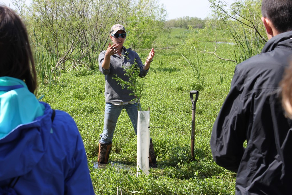 CRCL Habitat Restoration Project Coordinator Brittany Boyke training volunteers to plant saplings.