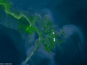Birdsfoot Delta - Restore the Mississippi River Delta