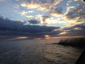 Restore the Mississippi River Delta - What We Do