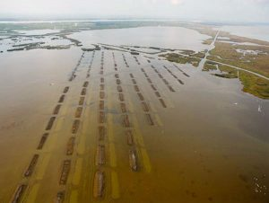 Terraces aerial shot - Restore the Mississippi River Delta