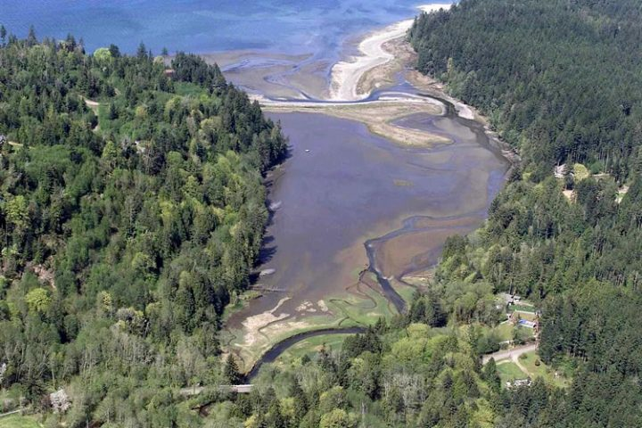 Estuaries 101: 3 things to know about this important ecosystem