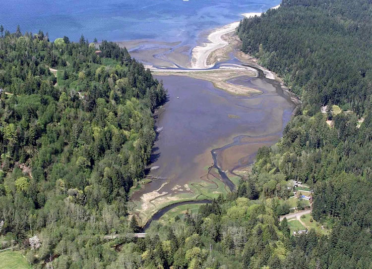 Estuaries 101 3 Things To Know About This Important Ecosystem