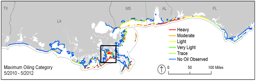 Map of extent and degree of maximum shoreline oiling from the Deepwater Horizon oil disaster. The black box indicates Barataria Bay, La. From Michel et al. 2013: http://journals.plos.org/plosone/article?id=10.1371/journal.pone.0065087