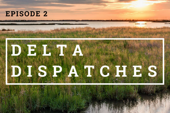 Delta Dispatches Podcast March 9, 2017