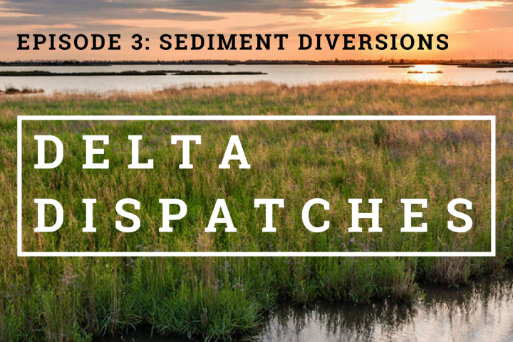 Delta Dispatches Podcast – Sediment Diversions