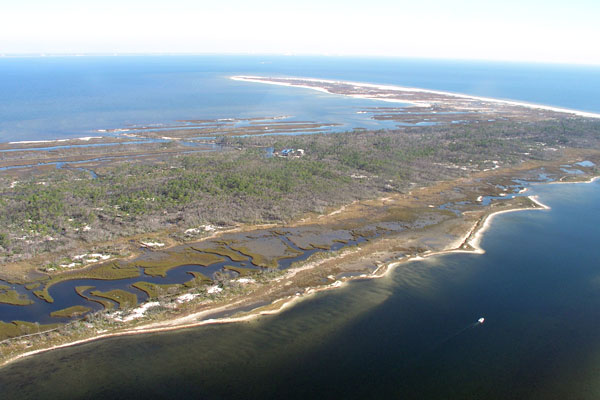 the role and importance of barrier islands in the protection of land masses Warmer shorter winters disrupt arctic terrestrial  the role of snow as a barrier to  islands, and adjacent land masses and are thus very important for.