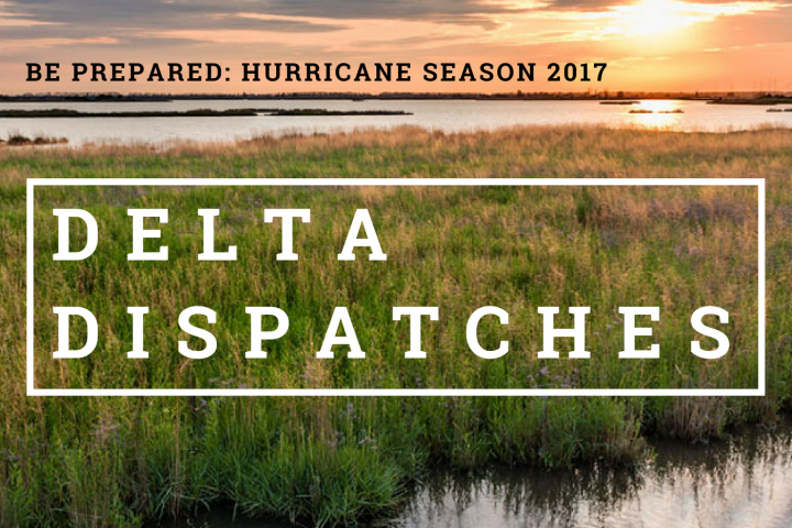 Delta Dispatches: Hurricane Season 2017