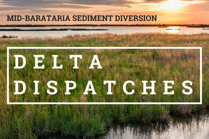 Delta Dispatches: The Mid-Barataria Sediment Diversion