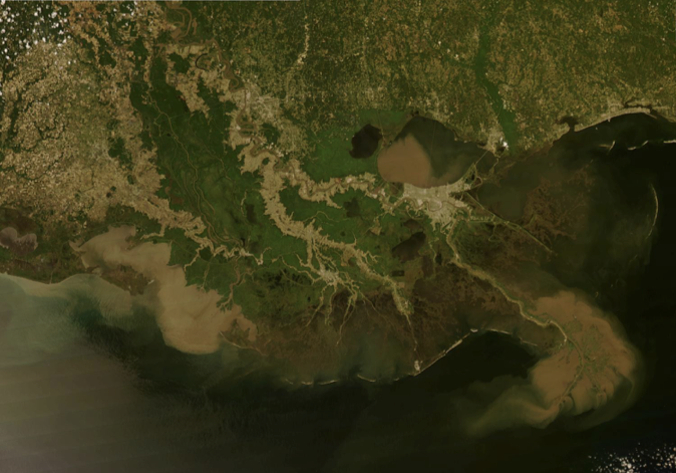 Can We Build Stable Land in the Mississippi River Delta with River Sediments?