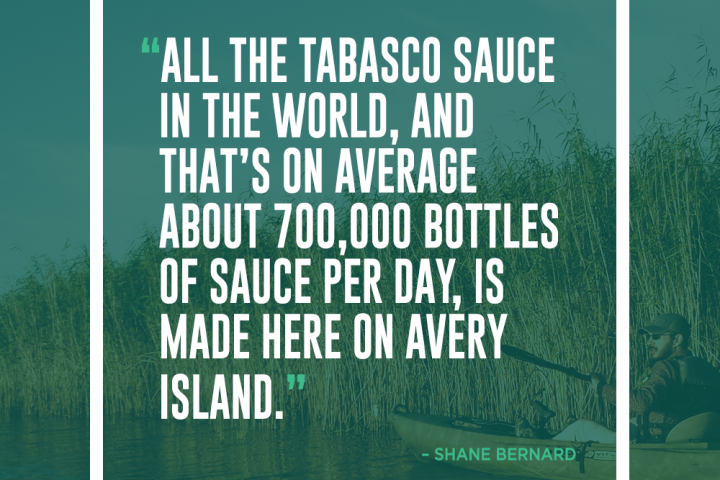 Delta Dispatches – The Conservation History of Tabasco