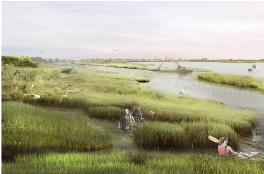 Coastal Latest & Greatest: 3 Ways Over $130 Million is Coming to Restore the Coast