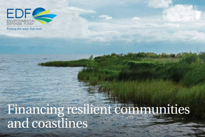 How Environmental Impact Bonds Can Help Louisiana Restore its Coast Better, Faster, and for Less Money