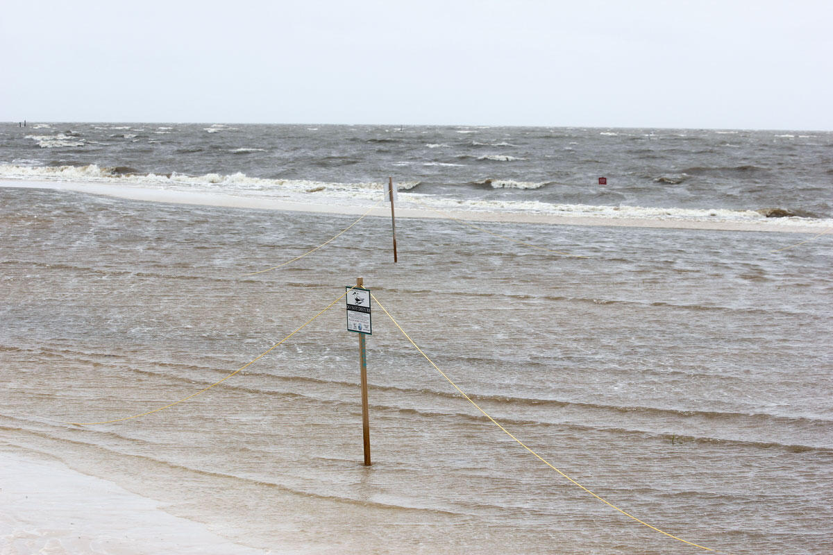Stakes and twine that alerted beachgoers to nesting Least Terns show the outline of the nesting area where chicks drowned after Tropical Storm Cindy. Photo: Abby Darrah.