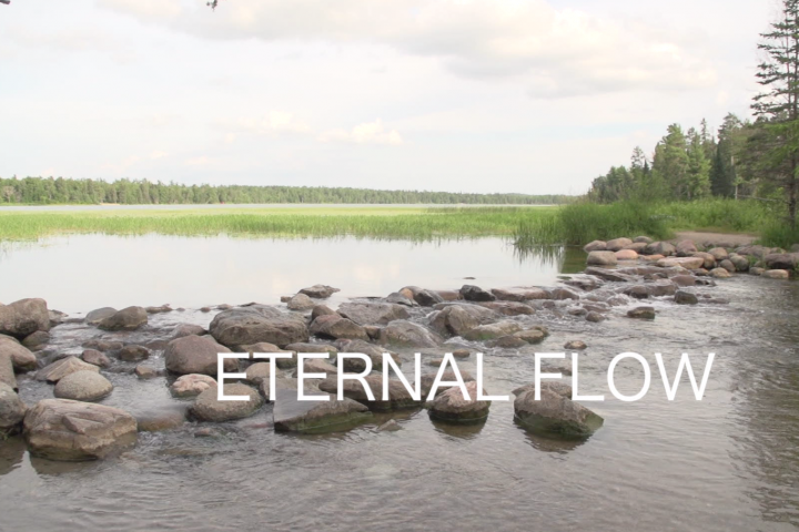 Eternal Flow: Mississippi River Views from Louisiana